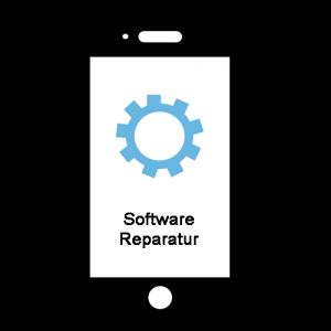 Software-Reparatur